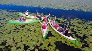 Grup in canoe Delta Dunarii