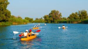 In caiac in Delta Dunarii