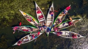 ture canoe delta dunarii