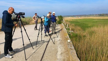 ture de birdwatching delta dunarii