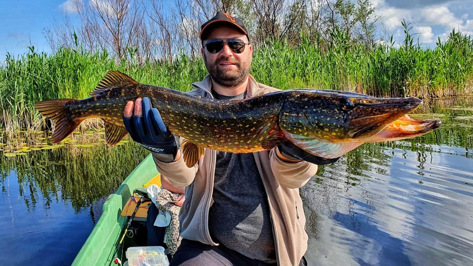pescuit la stiuca delta dunarii