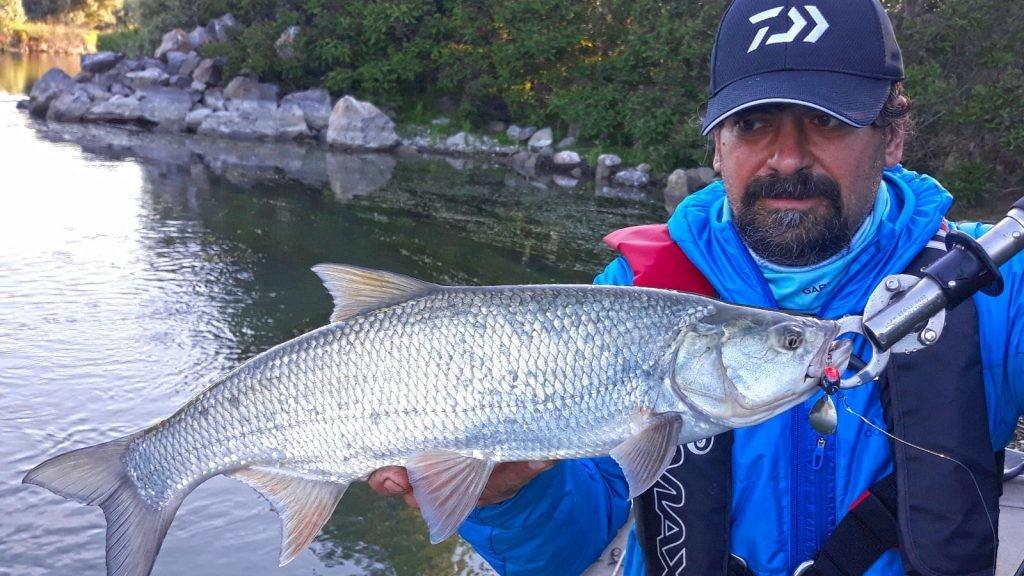 Video: Năluci recomandate pentru pescuitul AVATULUI