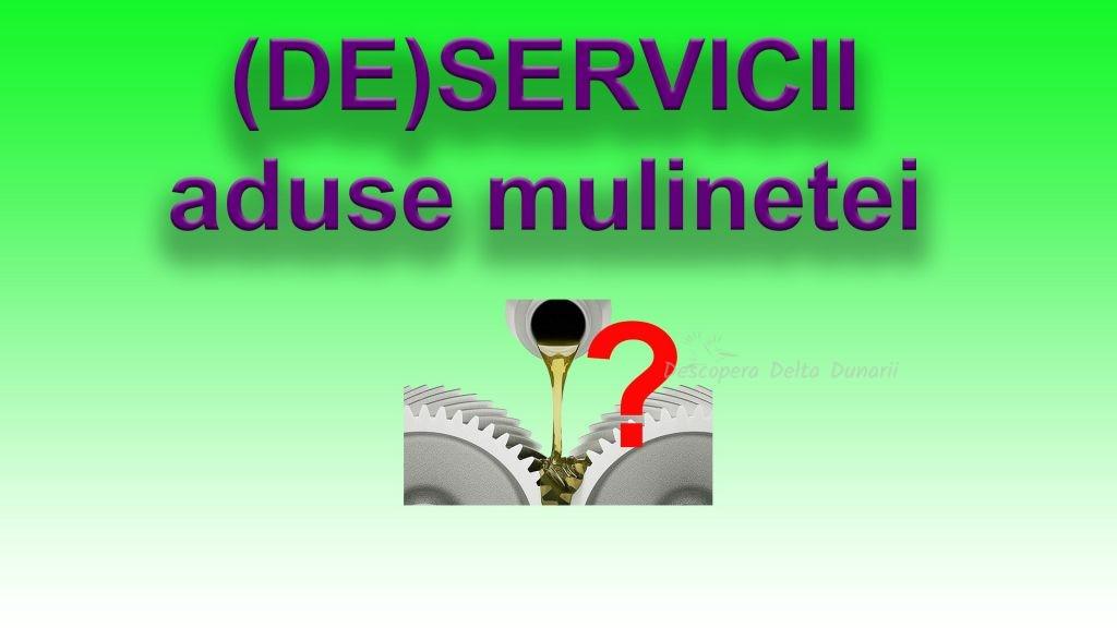 Video: (DE)Servicii aduse mulinetei