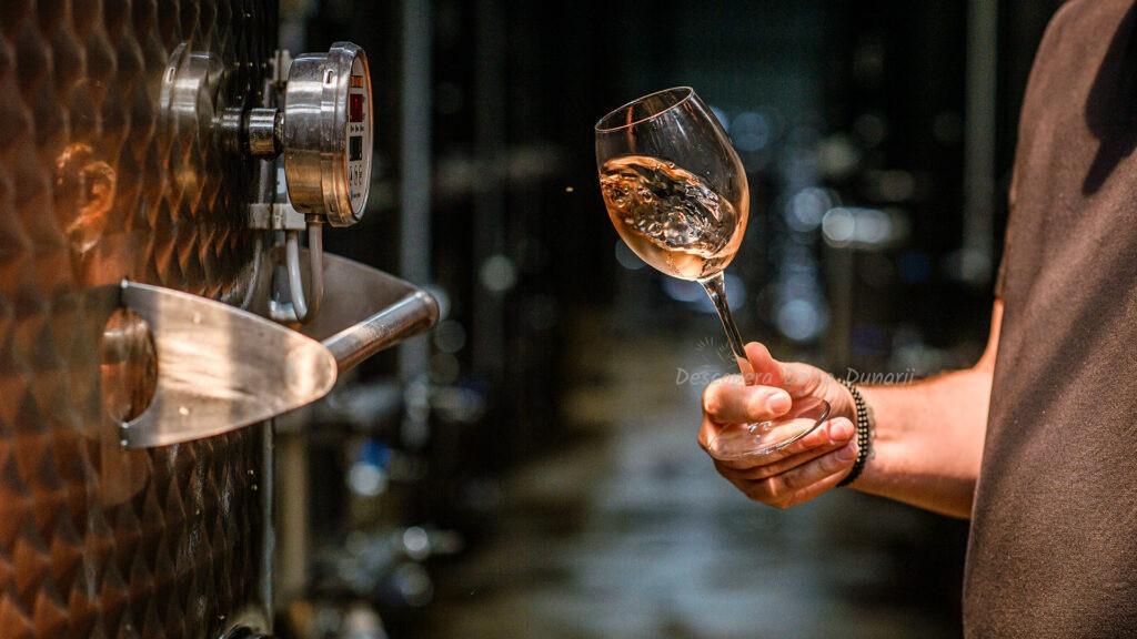 Prezentare / degustare de vinuri Lebada Neagra, toamna 2021